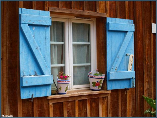 Fenêtre aux volets bleus, Village de L'Herbe, Bassin d'Arcachon (33)