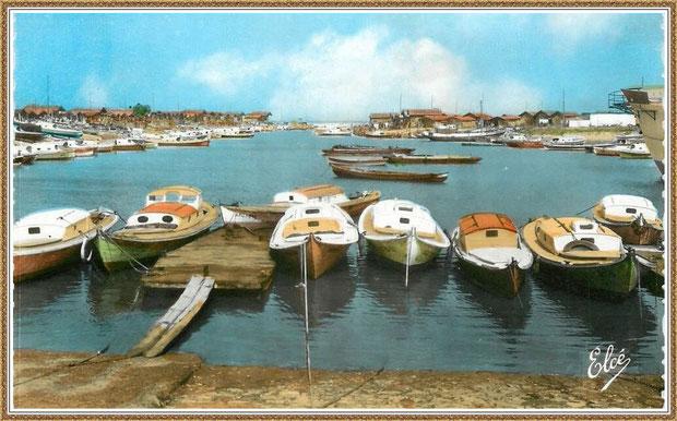 Gujan-Mestras autrefois : Pinasses et chalands dans la darse principale du Port de Larros, Bassin d'Arcachon (carte postale, collection privée)