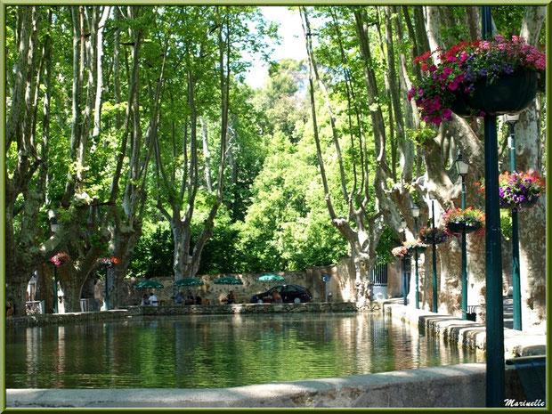 L'étang ombragé (plan d'eau) au coeur du village de Cucuron, Lubéron (84)