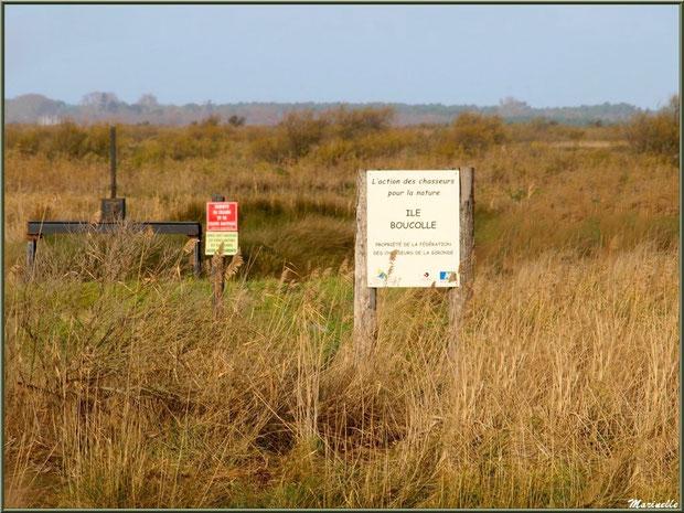 Ecluse à l'île de Boucolle, Sentier du Littoral, secteur Port du Teich en longeant La Leyre, Le Teich, Bassin d'Arcachon (33)