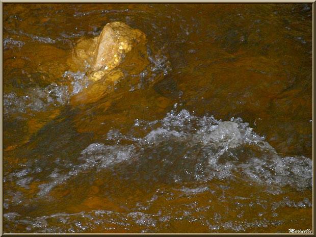 La Leyre et ses remous tels des pierres précieuses, Sentier du Littoral au lieu-dit Lamothe, Le Teich, Bassin d'Arcachon (33)