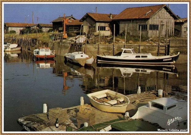 Gujan-Mestras autrefois : Pinasses, chalands... dans la darse secondaire du Port de Larros, Bassin d'Arcachon (carte postale, collection privée)
