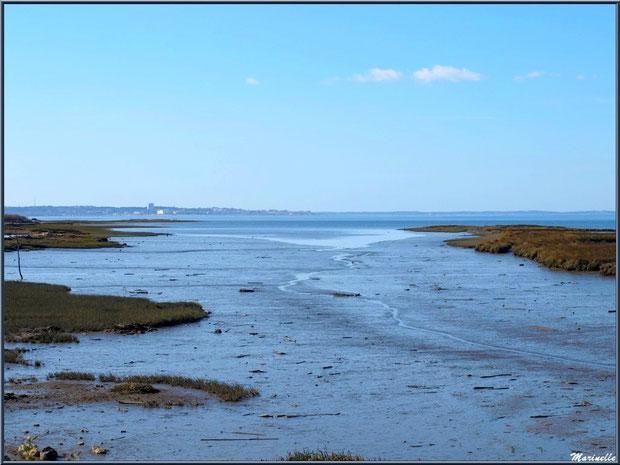 Chenal vers le Bassin à marée basse, en bordure, avec en fond Arcachon, Sentier du Littoral, secteur Moulin de Cantarrane, Bassin d'Arcachon