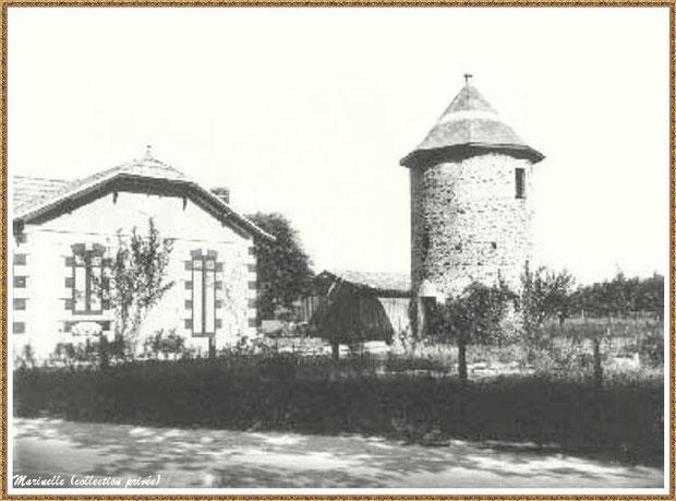 """Gujan-Mestras autrefois : le """"Moulin du Frère Jean"""" dit """"Chaouchoun"""", Bassin d'Arcachon (photo ancienne mais plus récente que les cartes postales précédentes, collection privée)"""