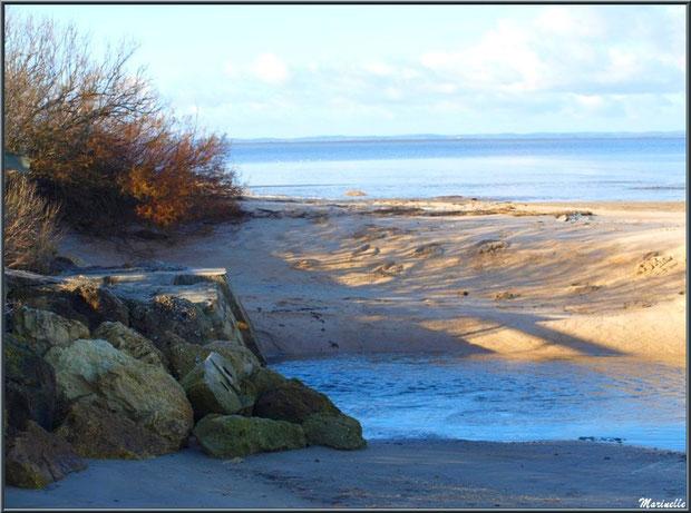 """""""Ecluse de La Pointe"""", sa sortie d'écoulement sur la plage côté Bassin, Sentier du Littoral, secteur Moulin de Cantarrane, Bassin d'Arcachon"""