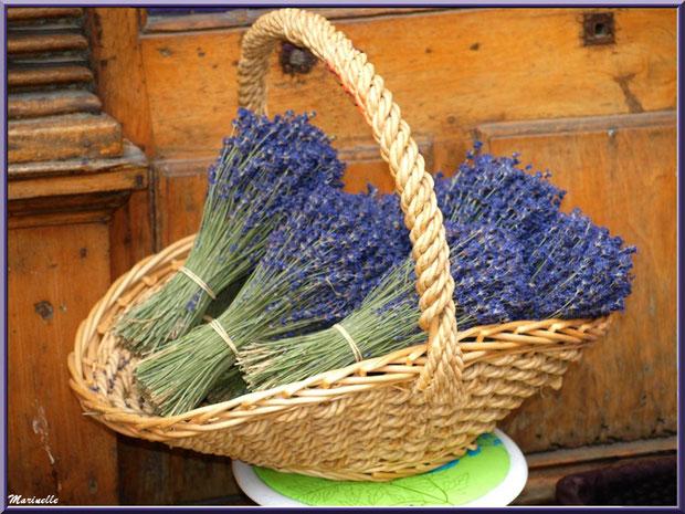 Panier de bouquets de lavande de la vallée de Sault (84)