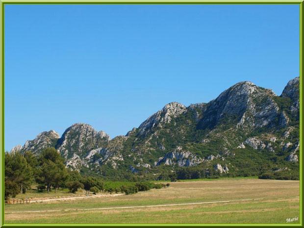 La piste de l'aérodrome de Romanin avec les Alpilles pour décor à Saint Rémy de Provence (13)