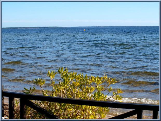 Terrasse en bordure du Lac de Cazaux... un paradis !