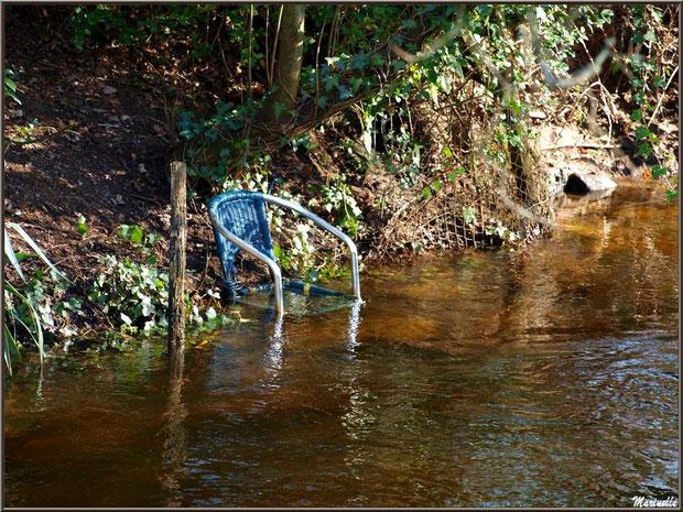 Chaise dans un bras du Canal des Landes au Parc de la Chêneraie à Gujan-Mestras (Bassin d'Arcachon)