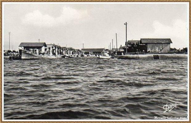 Gujan-Mestras autrefois : aux environs de 1950, l'entrée du Port du Canal, Bassin d'Arcachon (carte postale, collection privée)