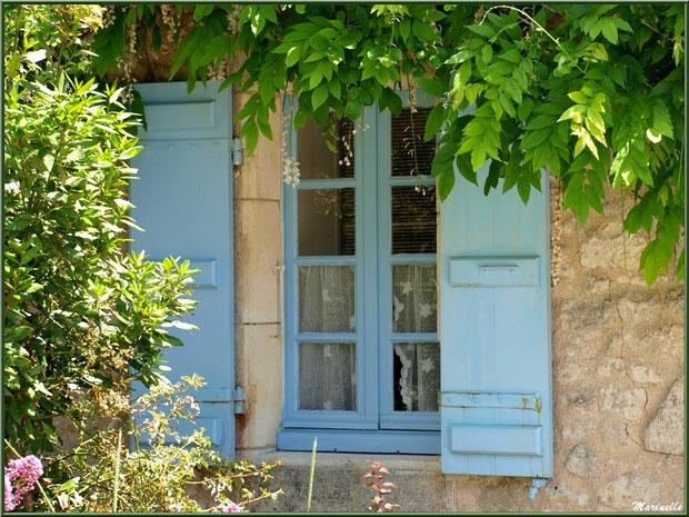 Fenêtre aux volets bleus à la glycine à Talmont-sur-Gironde, Charente-Maritime