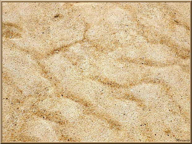 Le sable et les empreintes des flots sur la plage, côté Bassin, Sentier du Littoral, secteur Moulin de Cantarrane, Bassin d'Arcachon