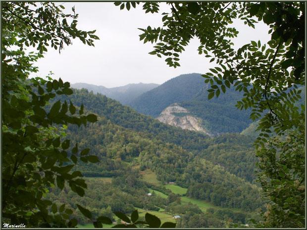 Panorama sur les Pyrénées et la vallée, derrière les arbres, depuis les hauteurs du village d'Aas, Vallée d'Ossau (64)