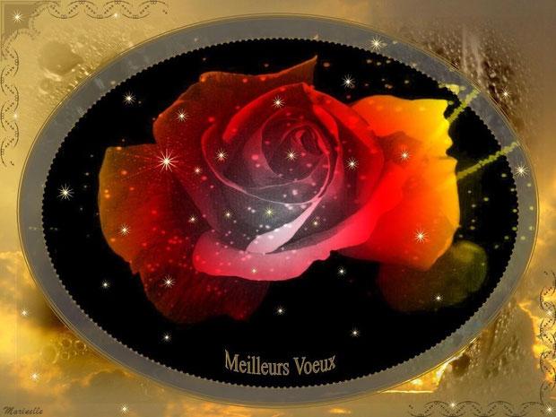 Meilleurs voeux : rose rouge sur lit d'or