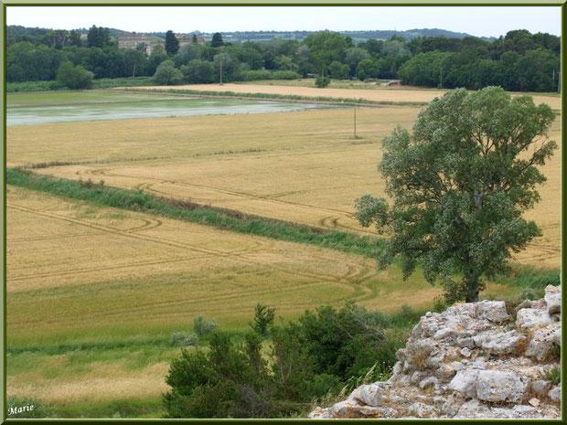 Paysage et panorama à l'extrémité de l'aqueduc à Fontvielle dans les Alpilles (Bouches du Rhône) : champs, rizières...