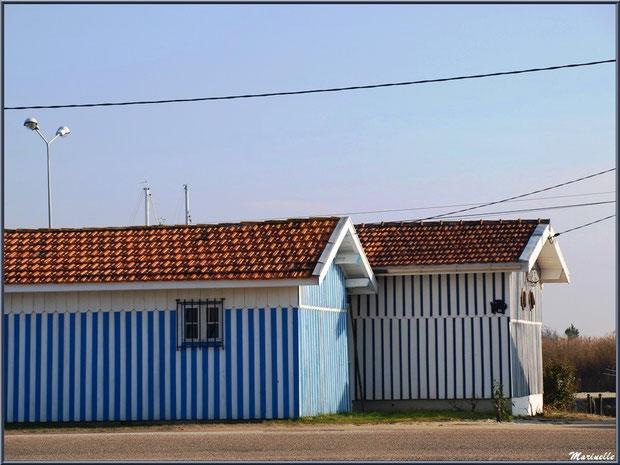 Cabanes ostréicoles sur le port d'Audenge, Sentier du Littoral, secteur Domaine de Certes et Graveyron, Bassin d'Arcachon (33)