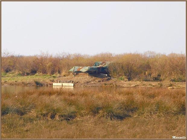 Tonne pour la chasse, côté Bassin, Sentier du Littoral, secteur Domaine de Certes et Graveyron, Bassin d'Arcachon (33)