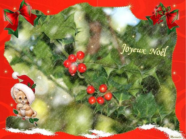 Joyeux Noël, houx et neige