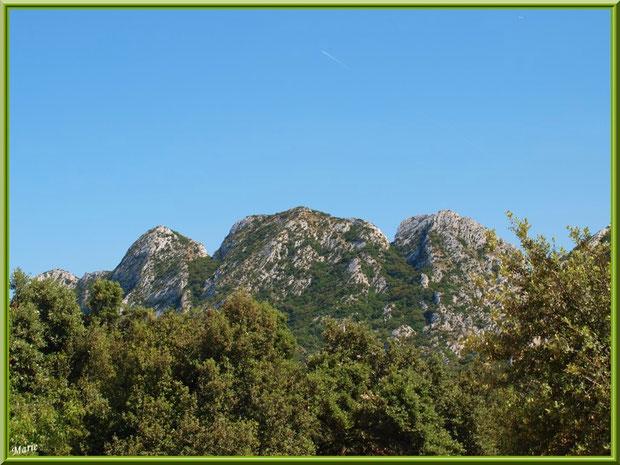 Les Alpilles au-dessus du vignoble du Château Romanin à Saint Rémy de Provence (13)