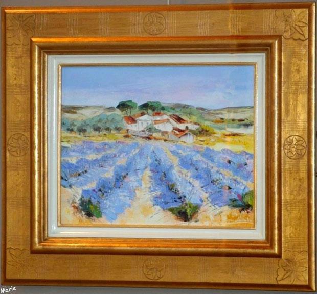 Tableau typiquement provençal dans une des nombreuses galeries d'art dans le centre ville à Saint Rémy de Provence, Alpilles (13)