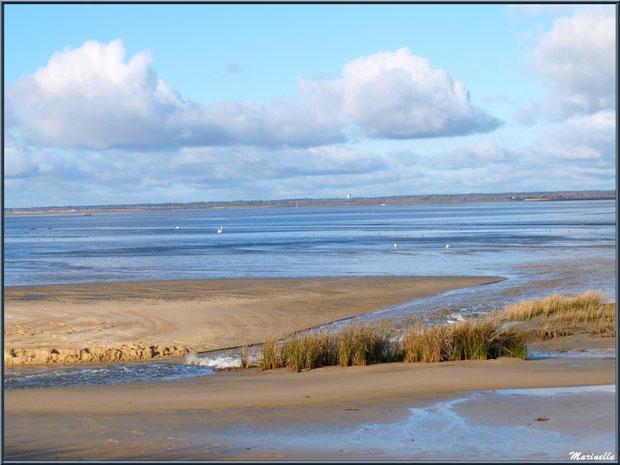 La plage et sa vue côté Bassin, Sentier du Littoral, secteur Moulin de Cantarrane, Bassin d'Arcachon