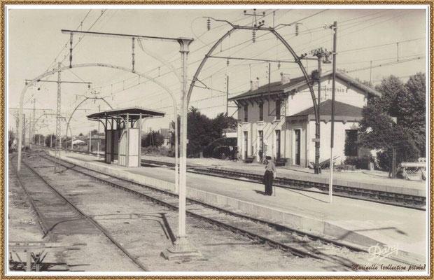 Gujan-Mestras autrefois : la gare et ses quais, Bassin d'Arcachon (carte postale, collection privée)
