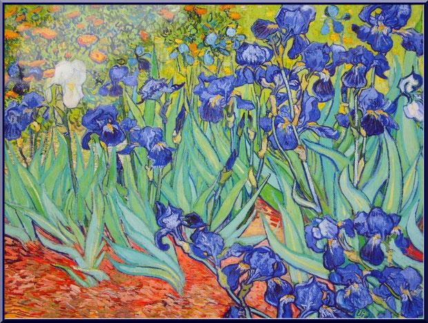 """Tableau """"Les iris"""" (1889) de Van Gogh dans le jardin du monastère de Saint Paul de Mausole à Saint Rémy de Provence (Alpilles - 13)"""