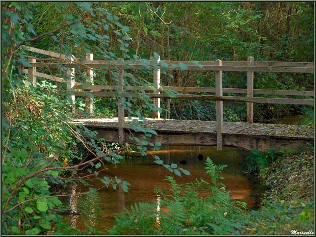 Petit pont menant à la fontaine Saint Clair à Mons, Belin-Beliet (Gironde)