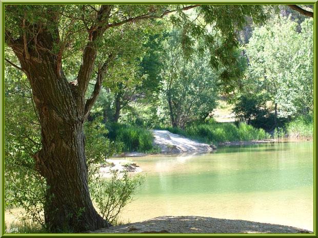 Verdoyance et reflets au lac de Peiroou à Saint Rémy de Provence, Alpilles (13)