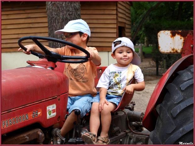 Le plaisir du volant sur le tracteur, Parc de la Coccinelle, mini-ferme à Gujan-Mestras, Bassin d'Arcachon (33)