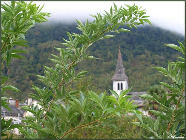 Le clocher de l'église Saint Pierre de Laruns derrière la végétation, Vallée d'Ossau (64)