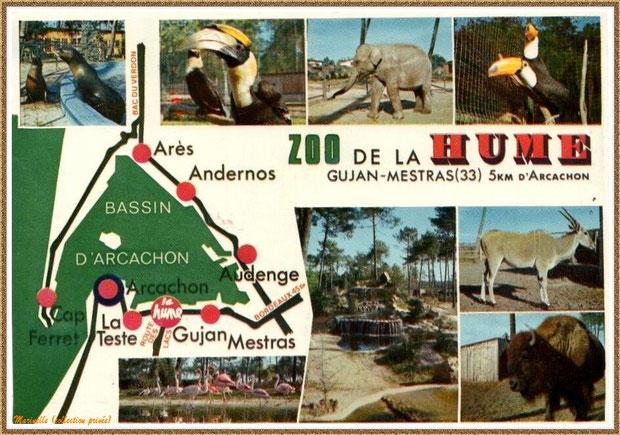 Gujan-Mestras autrefois : ancien Zoo de La Hume, Bassin d'Arcachon (carte postale, collection privée)