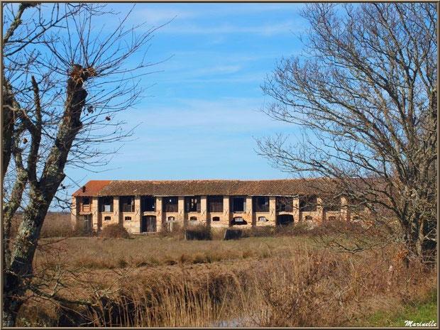 Bâtisse de Graveyron, Sentier du Littoral, secteur Domaine de Certes et Graveyron, Bassin d'Arcachon (33)