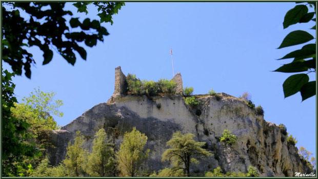 Le Château des Evêques, Fontaine de Vaucluse, Pays de La Sorgue, Vaucluse (84)