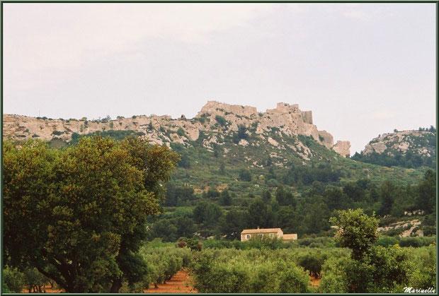 Le Château des Baux-de-Provence, Alpilles (13), depuis une oliveraie dans la vallée sur la D27 venant de Maussane-les-Alpilles