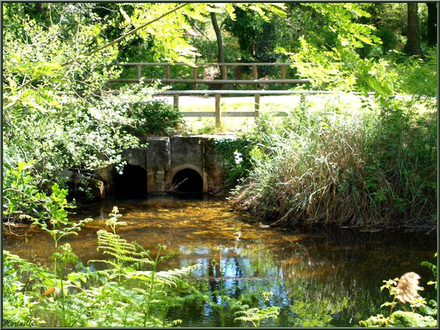 Une des écluses et reflets sur le Canal des Landes au Parc de la Chêneraie à Gujan-Mestras (Bassin d'Arcachon)