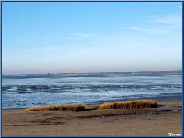 La plage, le Bassin à marée basse avec, à l'horizon, Lanton et Cassy, Sentier du Littoral, secteur Moulin de Cantarrane, Bassin d'Arcachon