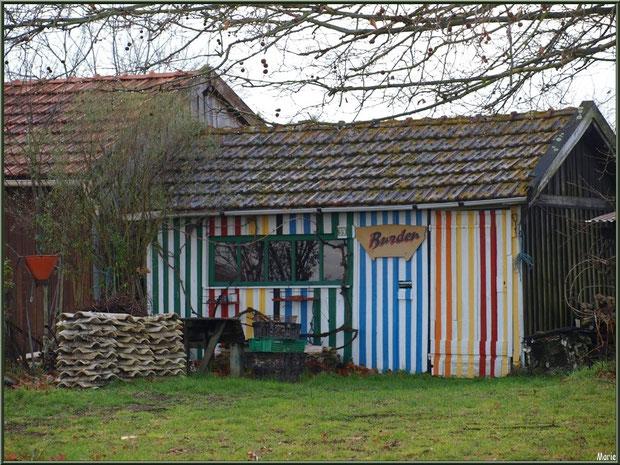 Cabane multicolore au port ostréicole de La Teste de Buch, Bassin d'Arcachon