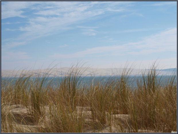 La Pointe au Cap Ferret : Oyats, le Bassin d'Arcachon et Dune du Pyla en toile de fond