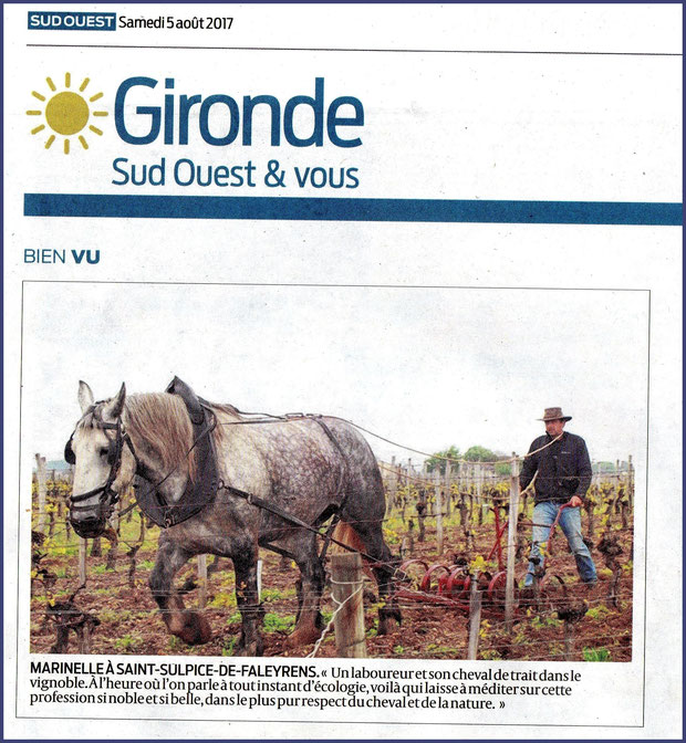 Photo Marinelle sur Journal Sud-Ouest, page Gironde, édition du 05/08/2017