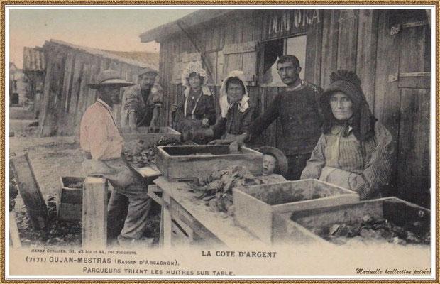 Gujan-Mestras autrefois : Parqueurs triant des huîtres sur table devant leur cabane, Bassin d'Arcachon (carte postale, collection privée)