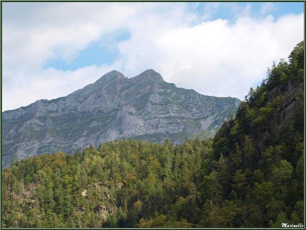 Panorama sur les Pyrénées vers le hameau de Gabas, Vallée d'Ossau (64)
