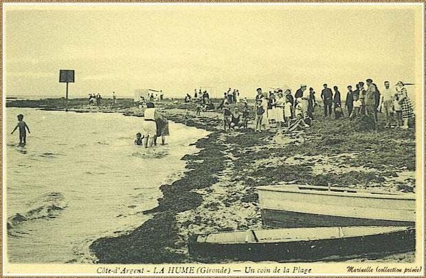 Gujan-Mestras autrefois : un coin de la plage de La Hume, Bassin d'Arcachon (carte postale, collection privée)