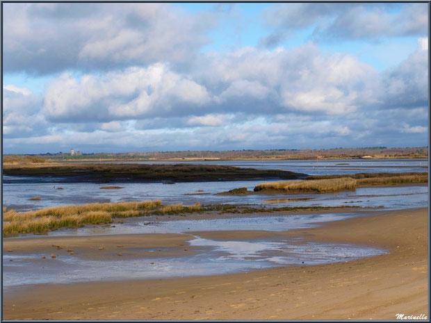 La plage, le Bassin avec, à l'horizon, le château d'eau d'Audenge, Sentier du Littoral, secteur Moulin de Cantarrane, Bassin d'Arcachon