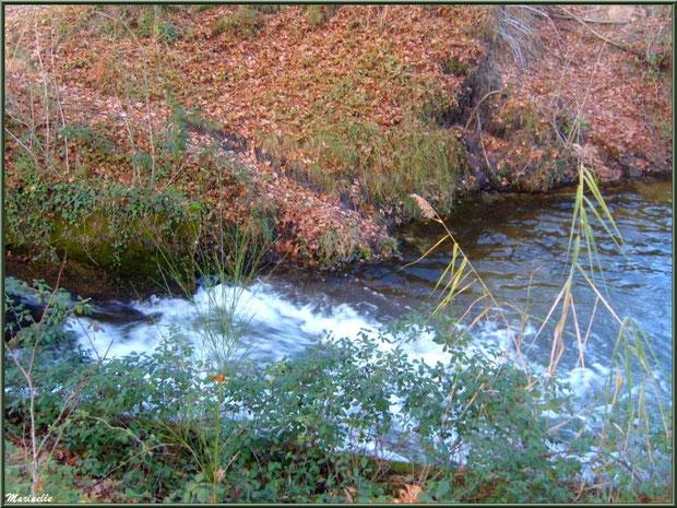 Le Canal des Landes en sortie d'une écluse au Parc de la Chêneraie à Gujan-Mestras (Bassin d'Arcachon)
