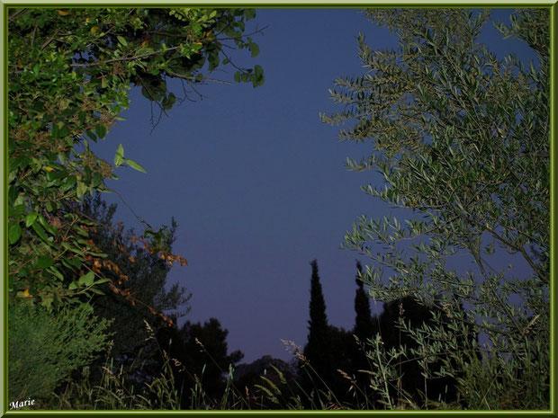 Tombée du jour dans la campagne à Saint Rémy de Provence, Alpilles (13)