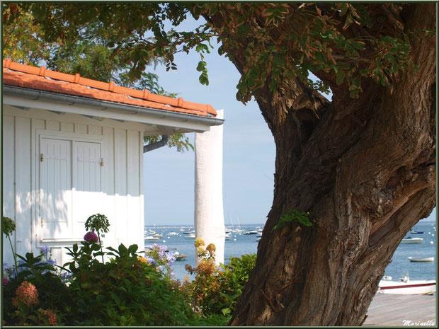 Maison en bordure du Bassin, Village de L'Herbe, Bassin d'Arcachon (33)