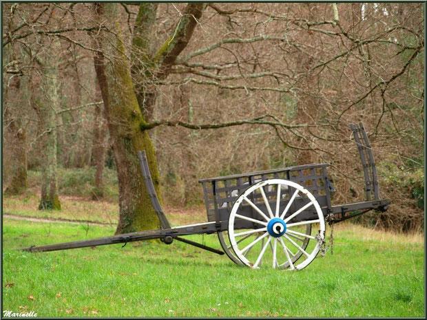 Charrette ancienne au Parc de la Chêneraie à Gujan-Mestras (Bassin d'Arcachon)
