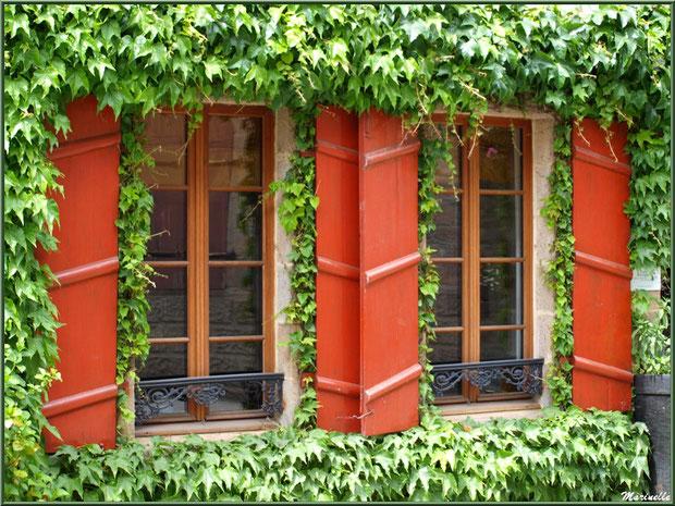 Maison aux volets rouges et sa vigne vierge en centre ville de Pontrieux, Côte d'Armor (22)