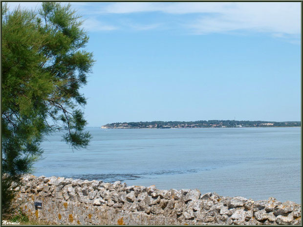 Vue sur La Gironde et Meschers-sur-Gironde depuis les fortifications de Talmont -sur-Gironde, Charente-Maritime